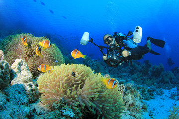 Underwater Photographer surrounded by Tropical Fish