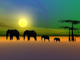 elephants and sun