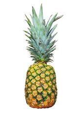白背景のパイナップル