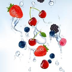 Vector wild berries in water