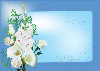 white floral design on blue background