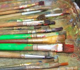brush for the art