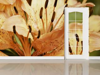a door and a creative wallpaper