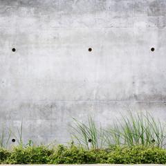 Grungy street wall