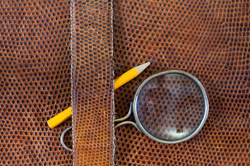 Snake leather texture with magnifying glass and pencil