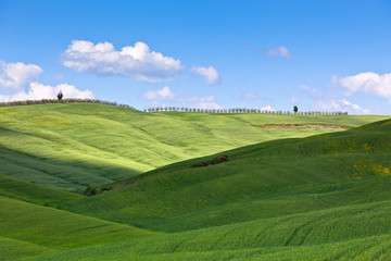 Poster Hill Light and shadows on Tuscan hills