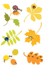 autumn leaves with little forest creature