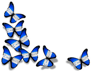 Honduras flag butterflies, isolated on white background