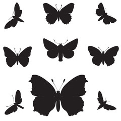 High resolution conceptual group of black shapes of butterfly