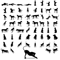 High resolution conceptual collection of black dog silhouette
