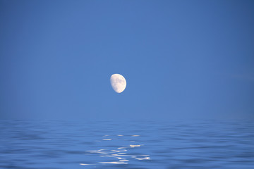 Full moon on the blue sky