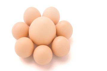 big and small eggs shaped line a flower with clipping path