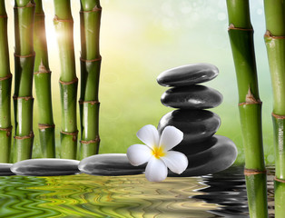 spa stones,bamboo  with frangipani