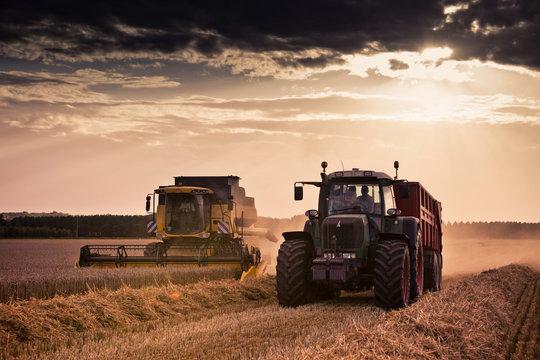 moisson tracteur blé moissonneuse agriculture