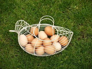 Eier 4