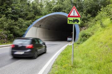 Tunnel mit fahrendem Auto