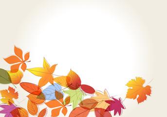 Colorful autumn leaves illustration