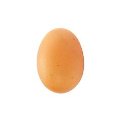 egg on a white background