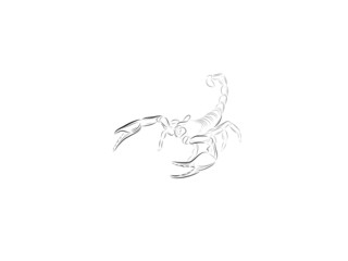 Sketch of a scorpion with the lifted tail and the exposed claws