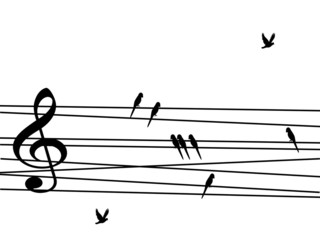 Singing birds looking like musical notes