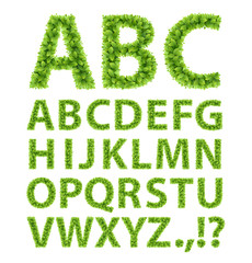 Wall Mural - Green Leaves font