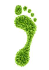 Wall Mural - Green leaves footprint