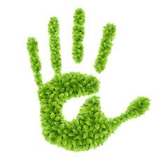Wall Mural - Green leaves hand.