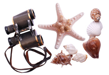 Marine clip art
