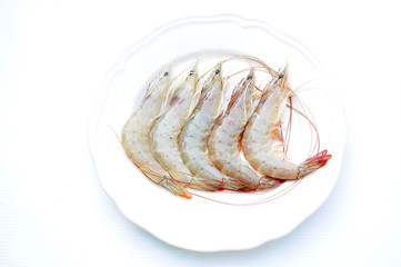 fresh shrimp  isolated in white