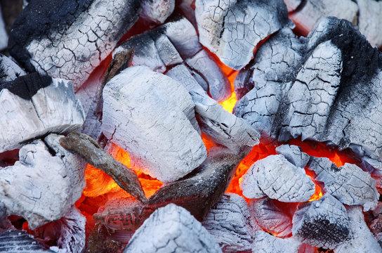 Holzkohle - charcoal 18