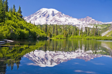 The Beautful Reflection of Mt Rainier from the Bench Lake