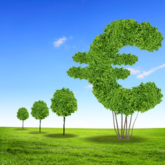 Green grass euro symbol