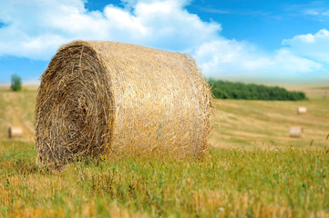 Straw bales in irish countryside