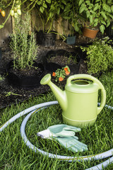 Watering Pot on a Grass in Summer Garden