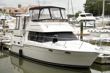 Luxury yachts in marina