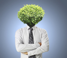 Head Trees