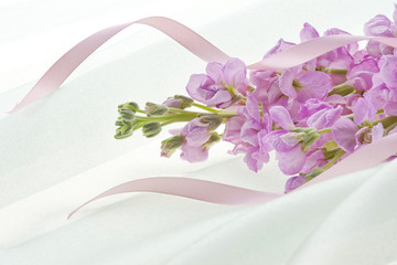 stock flower