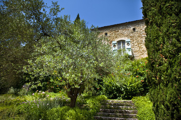Fototapete - Maison, campagne, jardin, immobilier, campagne
