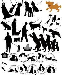 Dogs cats of a rat animals a vector