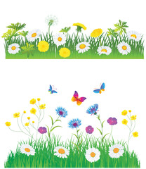 Green Meadow with Flowers. Vector set.