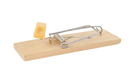 mousetrap with cheese isolated