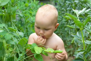 child eating peas