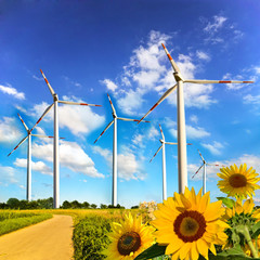 Windwheels and sunflowers