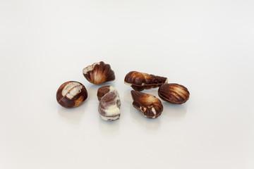 Chocolate & seashell
