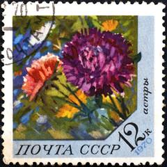 postage stamp USSR - CIRCA 1970