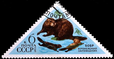 postage stamp USSR - CIRCA 1973
