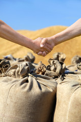 Farmers hands at sack with harvest wheat bakcground.