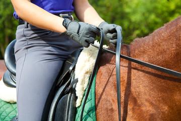 Papiers peints Equitation Dressage horse