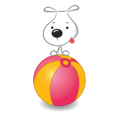 A funny dog sitting on the ball