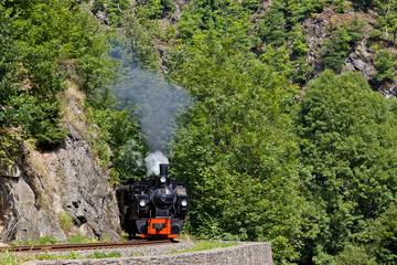 Harzer Schmalspurbahn Selketalbahn im Harz